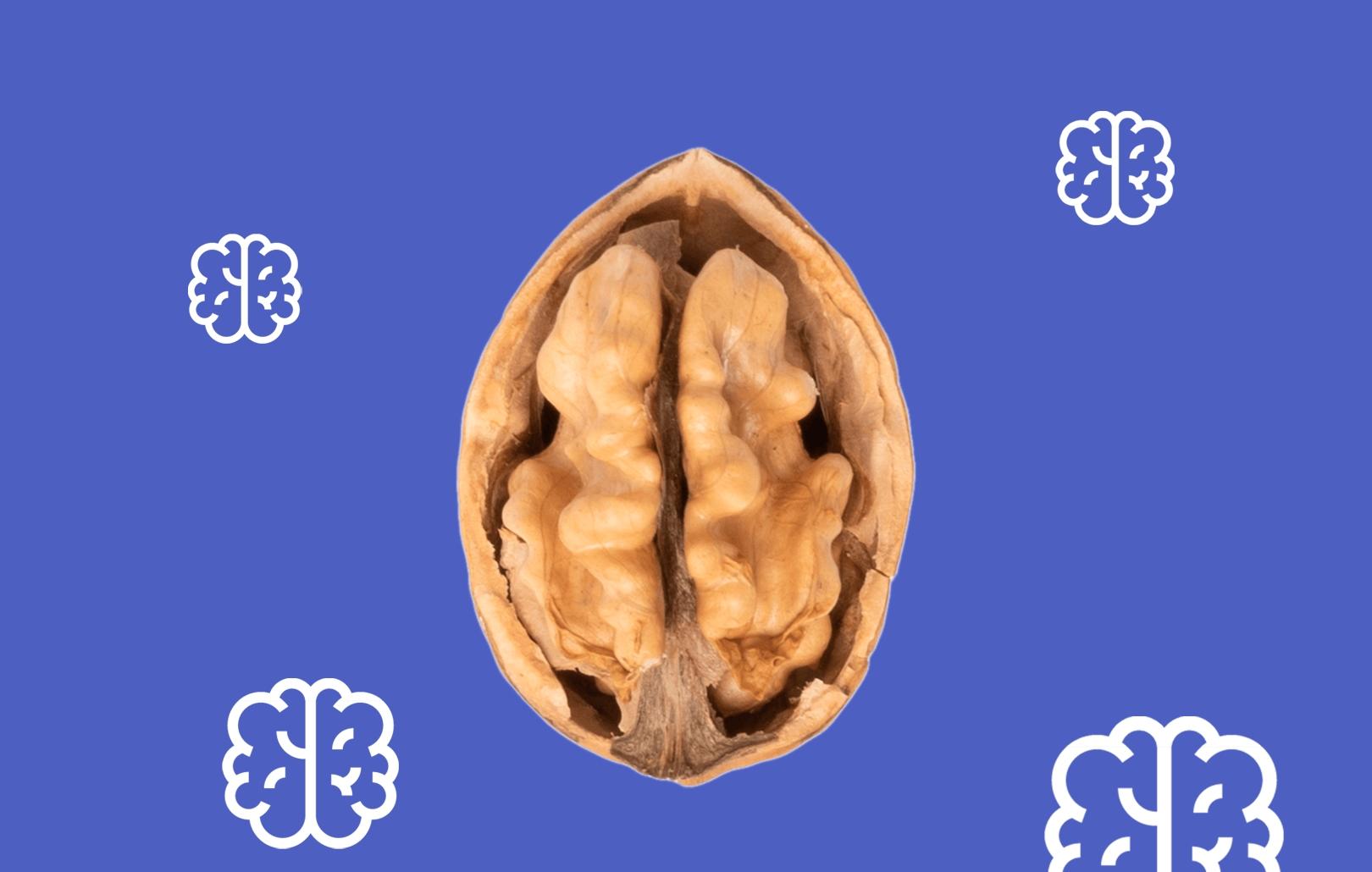 Мозг: выйти за границы возможного