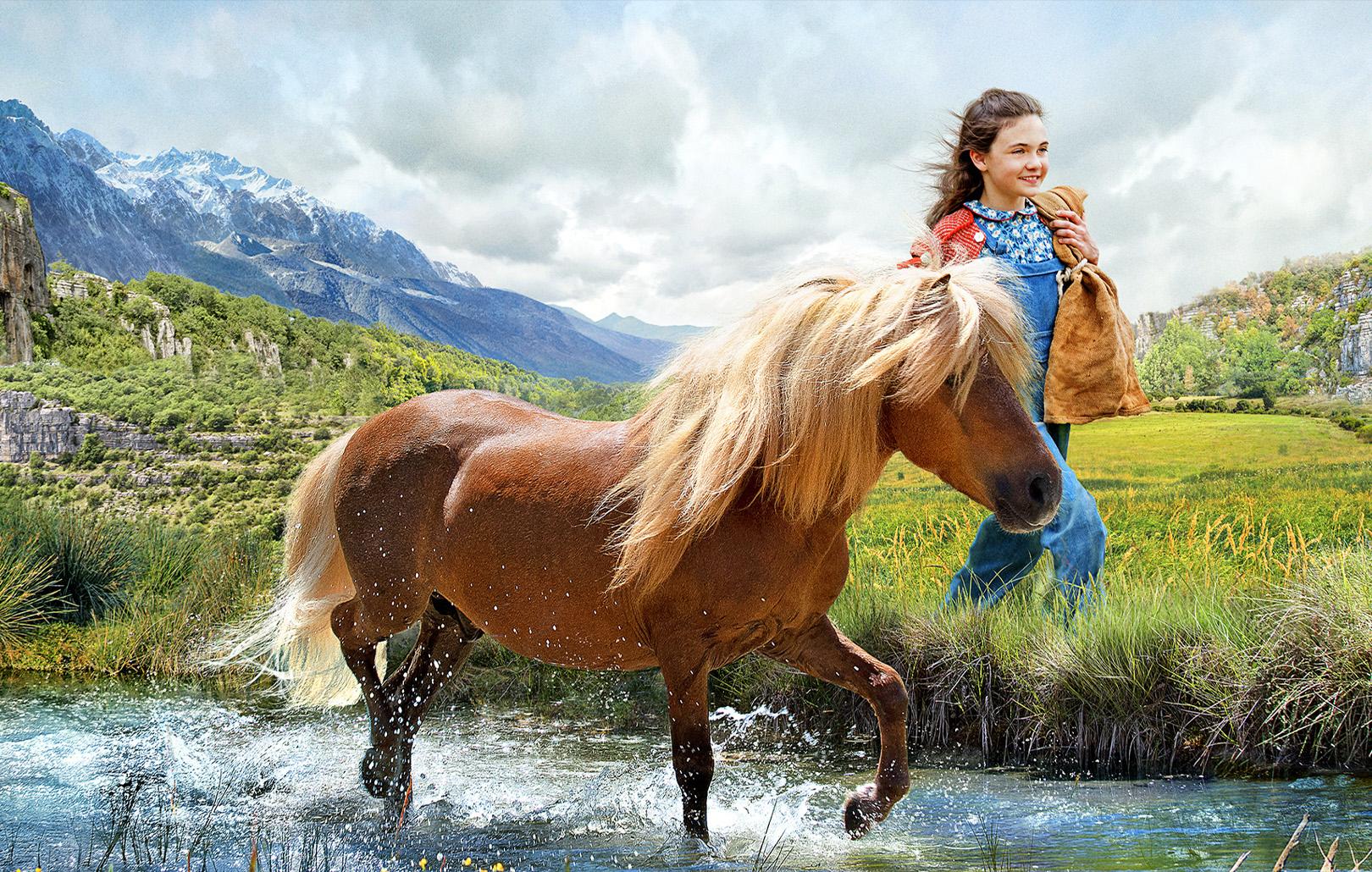Фильмы и мультфильмы про лошадей