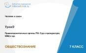 Правоохранительные органы РФ. Суд и прокуратура, МВД и др.
