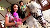Катаемся на пони с Пинки Пай - Отдых в Москве - Куда сходить