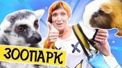 Маша Капуки идет в Контактный зоопарк в Питере - Как провести выходные - Куда сходить