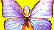 Сад бабочек на ВДНХ - Отдых в Москве - Куда сходить