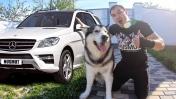 ВЛОГ: КУПИЛ АВТО / реакция собаки на покупку