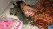 РЫСЬ ПРОБРАЛАСЬ НОЧЬЮ К РЕБЕНКУ / Мой день с большими и маленькими кошками