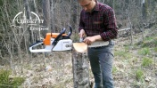 Лесные Тиски из пня. Заточка пилы DIY | Vices for woodcutter