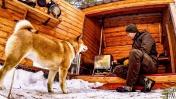 24 ЧАСА В ЛЕСУ С РЫЖИМ ЗВЕРЕМ - ИЗБА | Лесная КУХНЯ | Бушкрафт