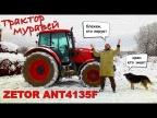ЧЕШСКИЙ МУРАВЕЙ ИЗ РОССИИ/ ZETOR ANT4135F/ Иван Зенкевич