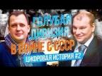 Цифровая история: Борис Ковалев о Голубой дивизии испанских фашистов