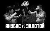Дмитрий «Анубис» vs Тимур «Золотой»