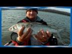 Рыбалка двух блогеров на реке Амур, и Болин! сети и Спиннинг! Один день на реке поздней осенью!