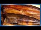 Окунь терпуг, холодного копчения, рецепты из рыбы от fisherman dv 27rus