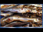 Мойва солёная в ПИВЕ, рыба холодного копчения по Китайски, рецепты из рыбы от fisherman dv.27rus
