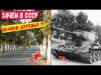 Почему в Европе деревья не белят, а в СССР белили?!