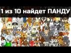 НАЙДИ ПАНДУ / ТЕСТ НА ВНИМАТЕЛЬНОСТЬ / 10 картинок