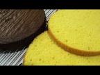 Ручным миксером готовим ВОЗДУШНЫЙ-ПОРИСТЫЙ БИСКВИТ/Vanilla and chocolate biscuit