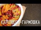 Картофель-гармошка [Рецепты Bon Appetit]