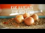 5 способов нарезать лук без слез [Рецепты Bon Appetit]