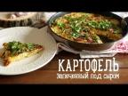 Картофель под сыром [Рецепты Bon Appetit]