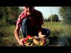 БАКЛАЖАН-КЕБАБ из телятины на углях