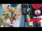 Цифровая Линейка из Штангенциркуля Своими Руками - Тюнинг Сверлильного Станка