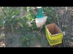 Автоматика на колодец и водопровод