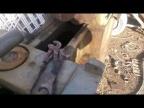 Токарный станок на металлоприемке