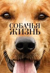 Постер к фильму Собачья жизнь 2017