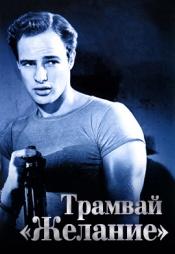 Постер к фильму Трамвай «Желание» 1951