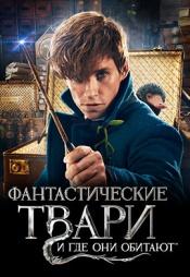 Постер к фильму Фантастические твари и где они обитают 2016