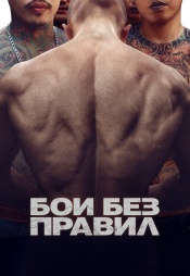 Постер к фильму Бои без правил 2017