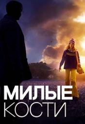 Постер к фильму Милые кости 2009