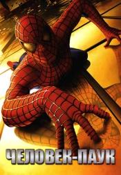 Постер к фильму Человек-паук 2002
