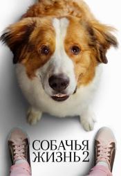 Постер к фильму Собачья жизнь 2 2019
