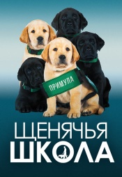 Постер к фильму Щенячья школа 2018