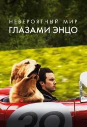 Постер к фильму Невероятный мир глазами Энцо 2019