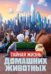 Постер к фильму Тайная жизнь домашних животных 2016