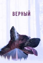 Постер к фильму Верный 2016
