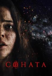 Постер к фильму Соната (2018) 2018