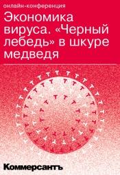 Постер к фильму Экономика вируса. «Черный лебедь» в шкуре медведя 2020