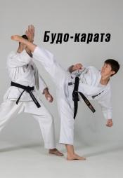 Постер к сериалу Будо-каратэ 2007