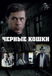 Постер к сериалу Чёрные кошки 2013