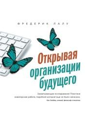 Постер к фильму Открывая организации будущего. Фредерик Лалу 2020