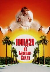 Постер к фильму Ниндзя из Беверли Хиллз 1997