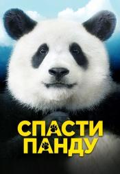 Постер к фильму Спасти Панду 2020