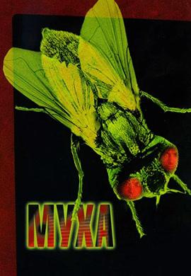 Постер к фильму Муха 1986
