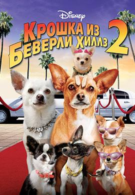 Постер к фильму Крошка из Беверли-Хиллз 2 2010