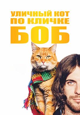 Постер к фильму Уличный кот по кличке Боб 2016
