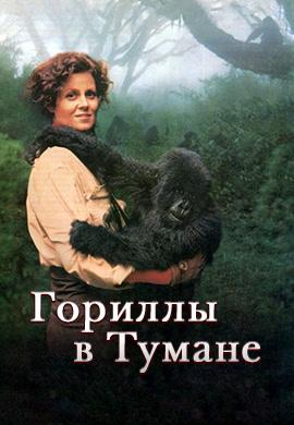 Постер к фильму Гориллы в тумане 1988
