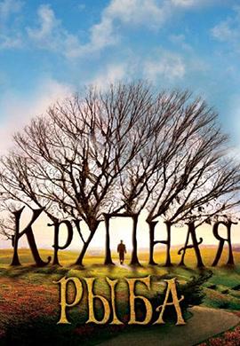 Постер к фильму Крупная рыба 2003