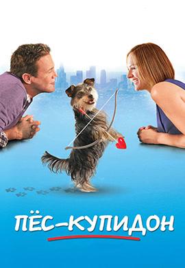 Постер к фильму Пёс-купидон 2012